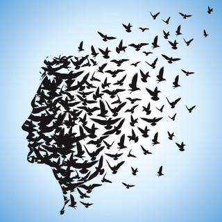 el-aprendizaje-de-la-libertad_detalle_articulo